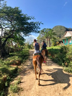 two girls on horses